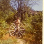 Olson Valley Wagon Wheel
