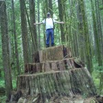 Myself standing on a large stump that has been cut into many many times